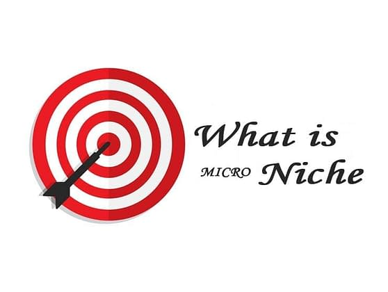 how to find micro niche ideas